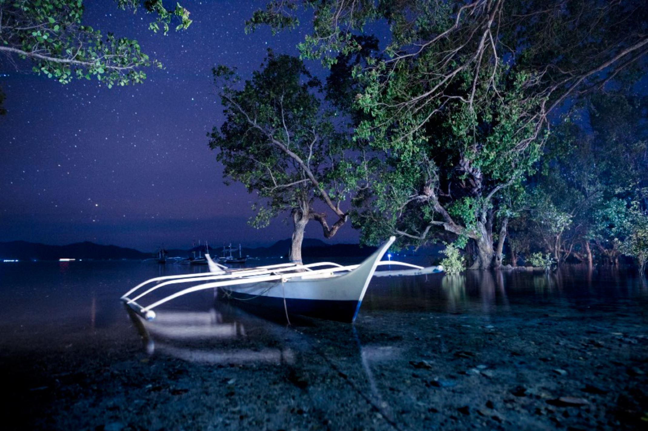 www.the-three-p.com-macro-photography-diving-blackwater-rare-critter-philipines-resort-holiday-vacation_01